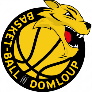 DOMLOUP SPORTS